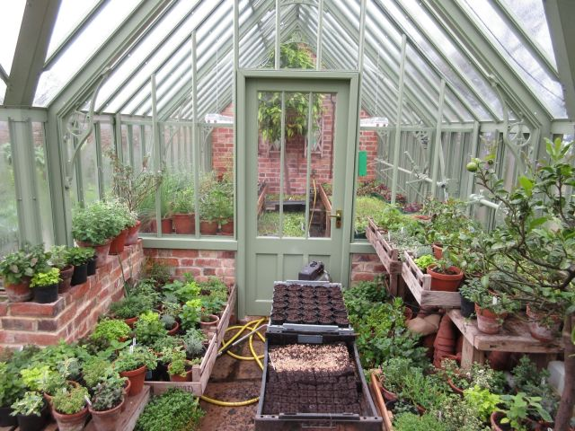 Packed Greenhouse